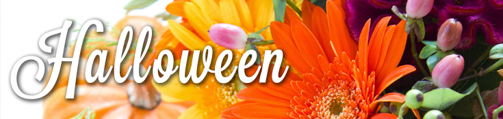 Halloween Flowers and Decorations